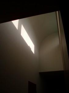 ペット用壁紙 壁から立上天井まで一気に貼りました。
