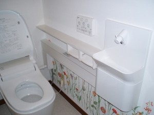 壁から給排水をつなぎ便器と繋いでいます。コンパクトで場所を取らないのが人気です。